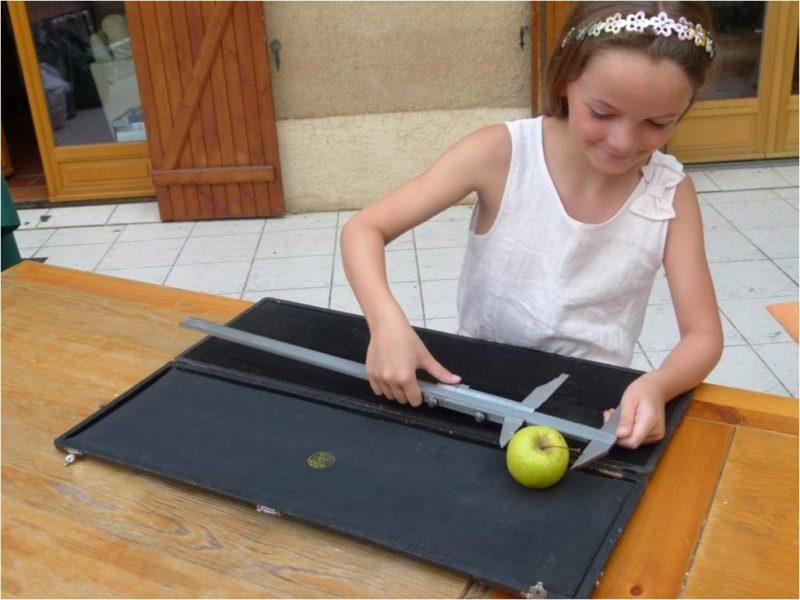 Une pomme chaque matin éloigne le médecinà condition de savoir viser…W. Churchill